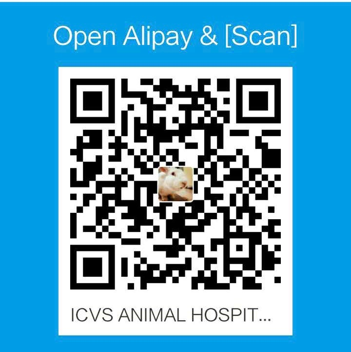 icvs alipay qr code