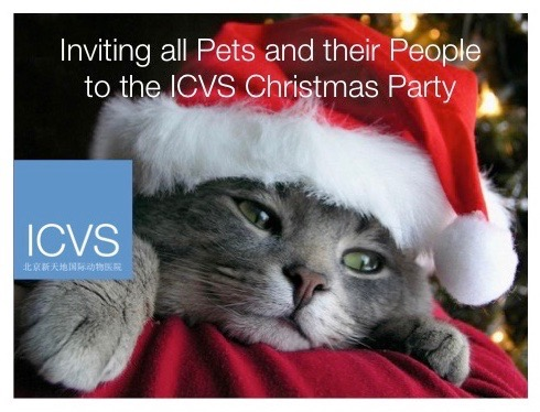 icvs christmas cat 1 logo cropped