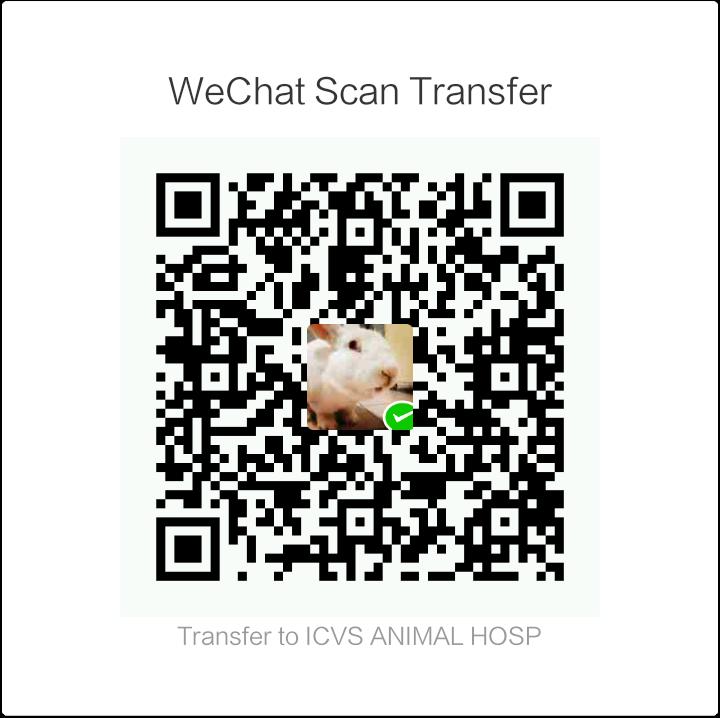 icvs wechat payment qr code