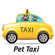 pet taxi graphic