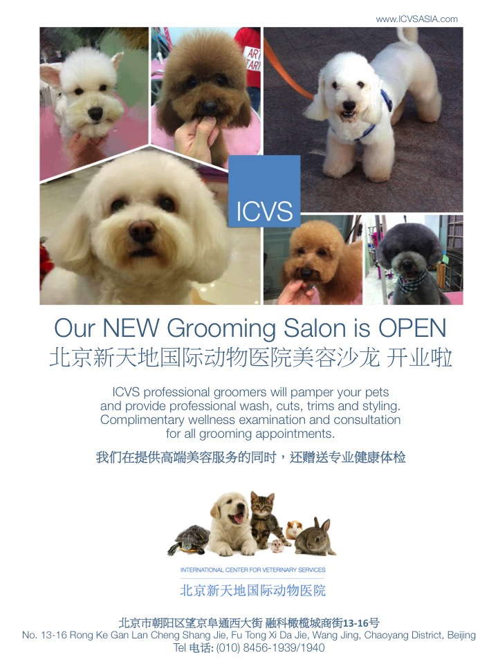 icvs grooming flyer smo